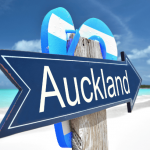 auckland-psychic-reeadings-online